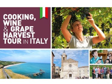 Cooking, Wine & Grape Harvest Tour in Italy