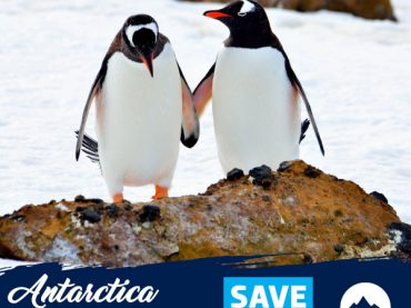 (English) Antarctica 2021/2022 Flash Sale!